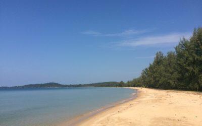 Phu Quoc: Wo der Pfeffer wächst und Wünsche in Erfüllung gehen – mein Tag mit Frosch und Fee
